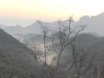 Achter verbazende landschappen met leafless boom royalty-vrije stock fotografie