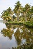 Achter Wateren in Kerala Stock Afbeeldingen