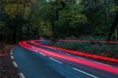 Achterautolichten die door een bosweg zoemen stock fotografie