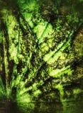 Achtereind van lotusbloemblad Royalty-vrije Stock Afbeeldingen