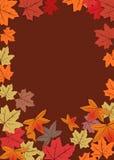 Achtergrond 2 van de herfst Royalty-vrije Stock Foto's