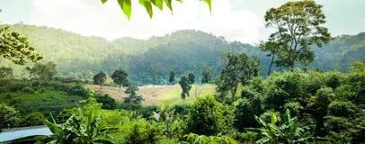 Achtergrond, aard, zonlicht, mistig berglandschap met sunb stock foto's
