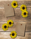 Achtergrond bloem Stock Foto