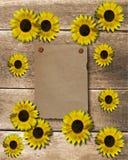Achtergrond bloem Royalty-vrije Stock Foto