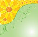 Achtergrond bloem, elementen voor ontwerp, vector Royalty-vrije Stock Foto's