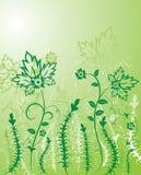 Achtergrond bloem, elementen voor ontwerp, vector Royalty-vrije Stock Afbeeldingen