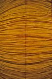 Achtergrond, detail van een verschrompeld blad, papyrus Royalty-vrije Stock Afbeeldingen