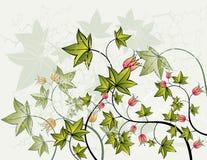 Achtergrond en bloemen, vector Royalty-vrije Stock Foto