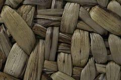 Achtergrond en structuur van waterhyacint Stock Fotografie