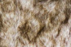 Achtergrond en textuur van dichte omhooggaand van bruin bont Royalty-vrije Stock Afbeelding