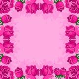 Achtergrond, frame van bloemen Royalty-vrije Stock Fotografie