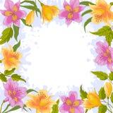 Achtergrond, frame van bloemen Stock Fotografie