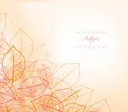 Achtergrond, groetkaart met gestileerde de herfstbladeren Royalty-vrije Stock Foto
