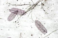 Achtergrond II van het rijstpapier Stock Afbeeldingen