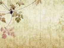 Achtergrond met aardachtige textuur Royalty-vrije Stock Foto