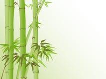 Achtergrond met bamboepatroon Royalty-vrije Stock Afbeelding