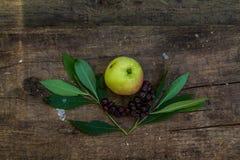 Achtergrond met bes en appel Royalty-vrije Stock Afbeeldingen