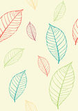 Achtergrond met bladeren Royalty-vrije Stock Afbeelding