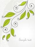 Achtergrond met bladeren en krullen. Royalty-vrije Stock Afbeelding