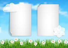 Achtergrond met blauwe hemel, de witte witte bloemen van het wolkeneind op gree Royalty-vrije Stock Afbeeldingen