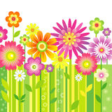 Achtergrond met bloemen Royalty-vrije Stock Foto