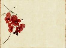 Achtergrond met bloemenelementen Stock Foto's