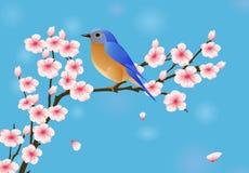 Achtergrond met bloesem en vogel royalty vrije stock afbeelding