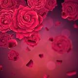 Achtergrond met dalende realistische rozen en bloemblaadjes royalty-vrije stock foto's