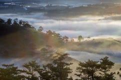 Achtergrond met de dichte landbouwbedrijven van de mistdekking en bos bij de dageraad royalty-vrije stock foto