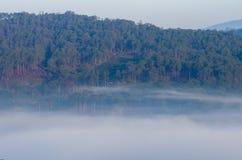 Achtergrond met de dichte landbouwbedrijven van de mistdekking en bos bij dageraaddeel 39 stock afbeeldingen