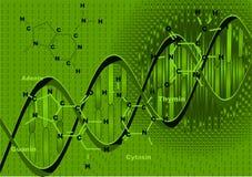 Achtergrond met DNA Stock Afbeeldingen