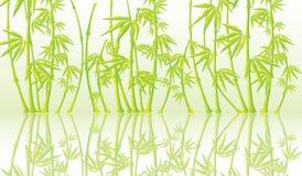 Achtergrond met een bamboe Stock Foto
