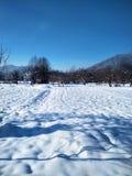 Achtergrond met een verse sneeuw in de blauwe toon stock fotografie