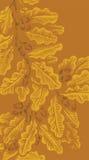 Achtergrond met eiken eikel en bladeren vector illustratie