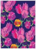 Achtergrond met gevoelige roze tulpen op een blauwe achtergrond Royalty-vrije Stock Afbeelding