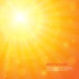 Achtergrond met glanzende zonnestralen Stock Afbeelding