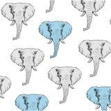 Achtergrond met grijze en blauwe hand getrokken olifanten Stock Foto's