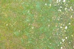 Achtergrond met groen paddestoeleiland Stock Foto's