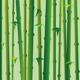 Achtergrond met groene bamboestammen, oosterse stijl Stock Foto's