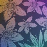 Achtergrond met hand getrokken bloemen Stock Foto's