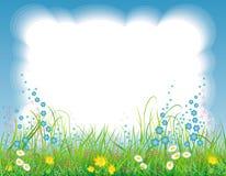 Achtergrond met het gras en de bloemen Royalty-vrije Stock Afbeelding