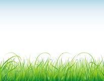 Achtergrond met het gras en de dalingen Royalty-vrije Stock Fotografie