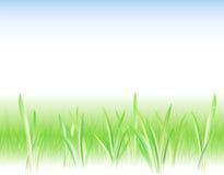 Achtergrond met het gras en de dalingen Royalty-vrije Stock Foto