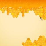 Achtergrond met honingraten en bij Royalty-vrije Stock Afbeeldingen