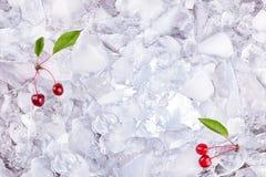 Achtergrond met kers op ijsblokjes, hoogste mening Royalty-vrije Stock Afbeelding