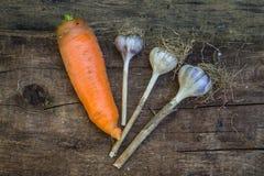 Achtergrond met knoflook en wortel Stock Fotografie