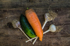 Achtergrond met komkommer, wortelen en knoflook Royalty-vrije Stock Afbeelding