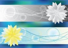 Achtergrond met lotusbloembloem Royalty-vrije Stock Afbeelding