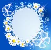 Achtergrond met madeliefje, vlinder en frame stock illustratie