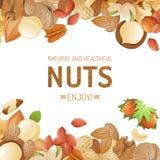 Achtergrond met noten stock illustratie